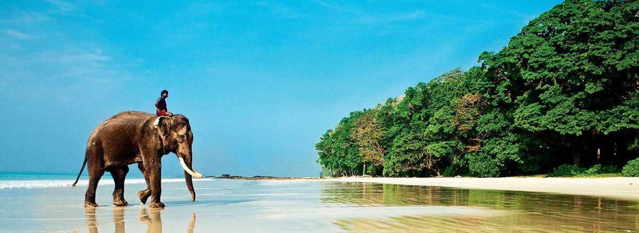 Горящие туры и путевки на Гоа, дешевые цены на отдых в Индии