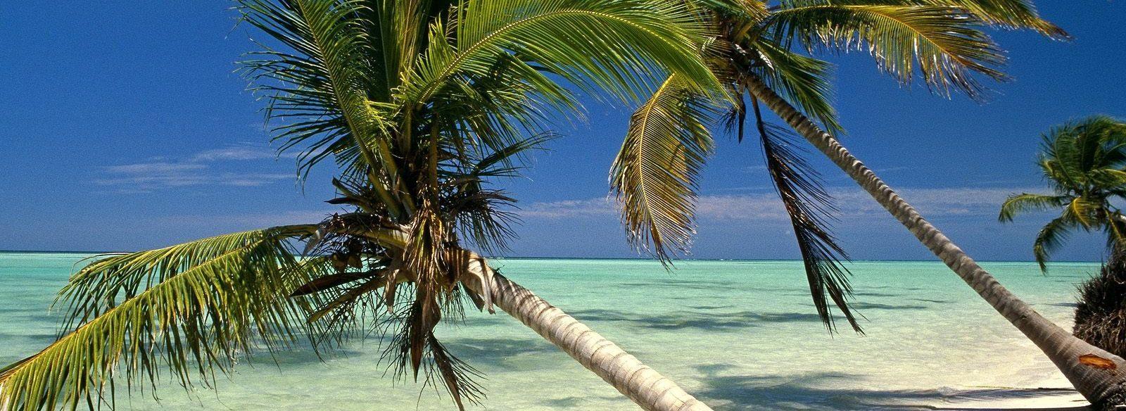 Горящие туры и путевки в Доминикану, дешевые цены на отдых в Доминикане