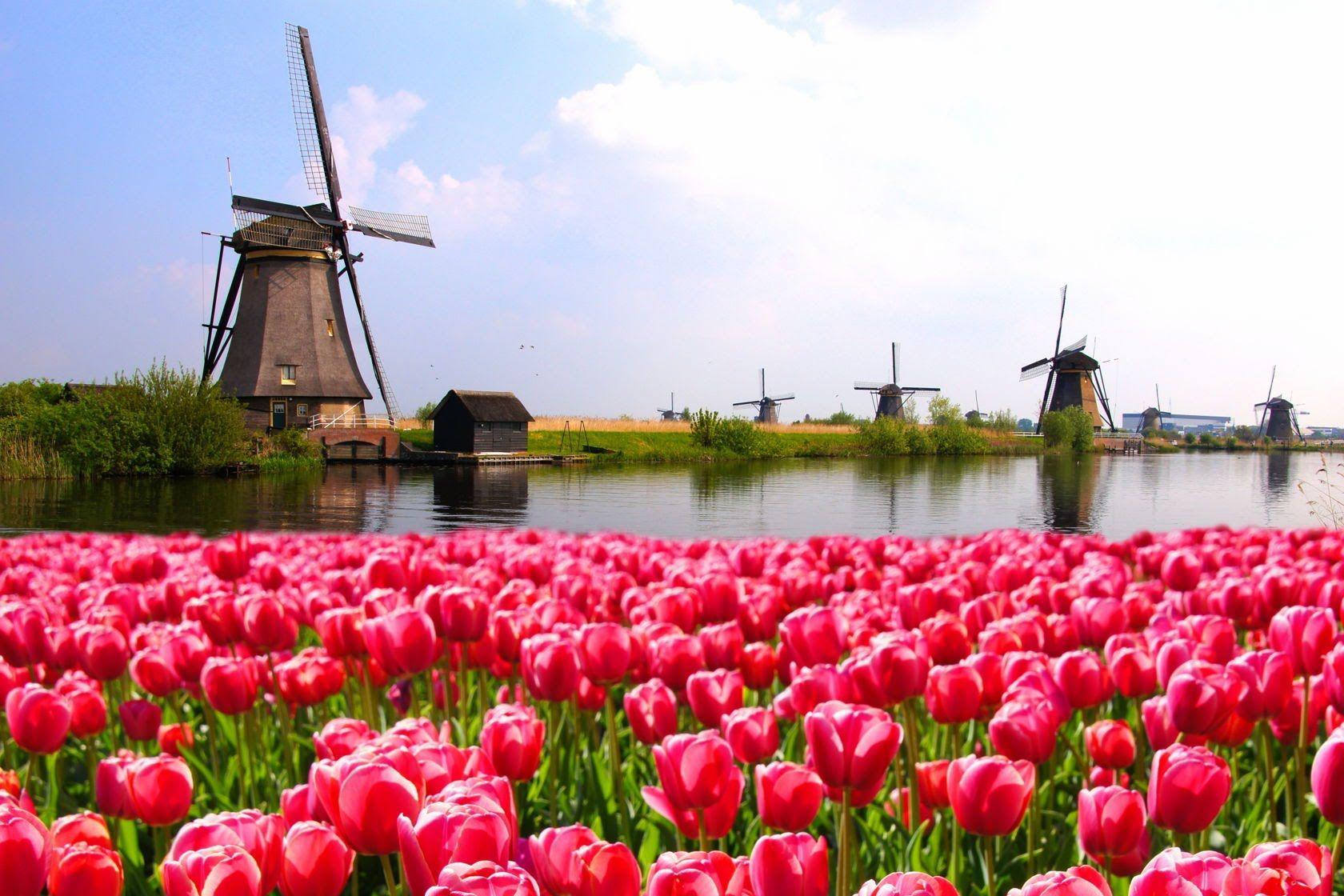 Нидерланды. Туры на майские праздники