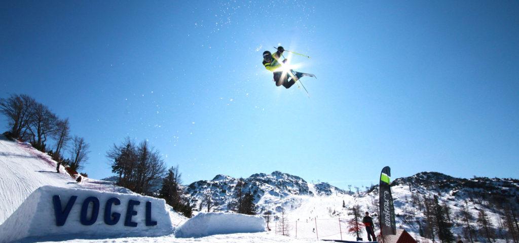Vogel-Snow-Park